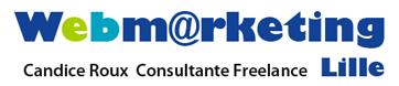 Webmarketing Lille Logo